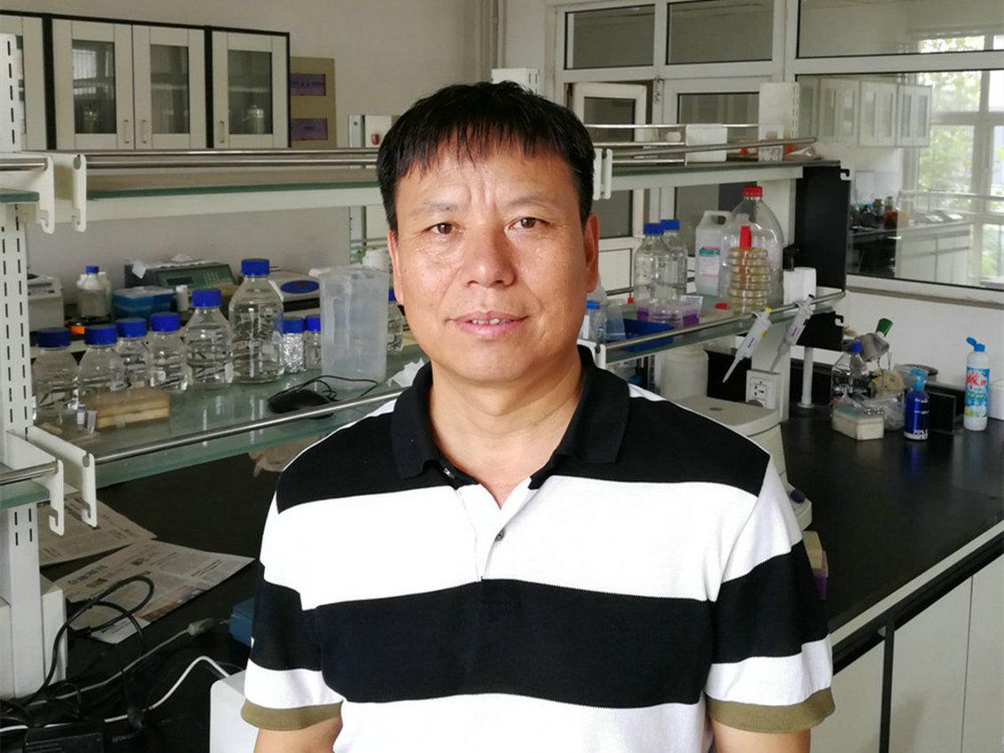 李    辉   研究员